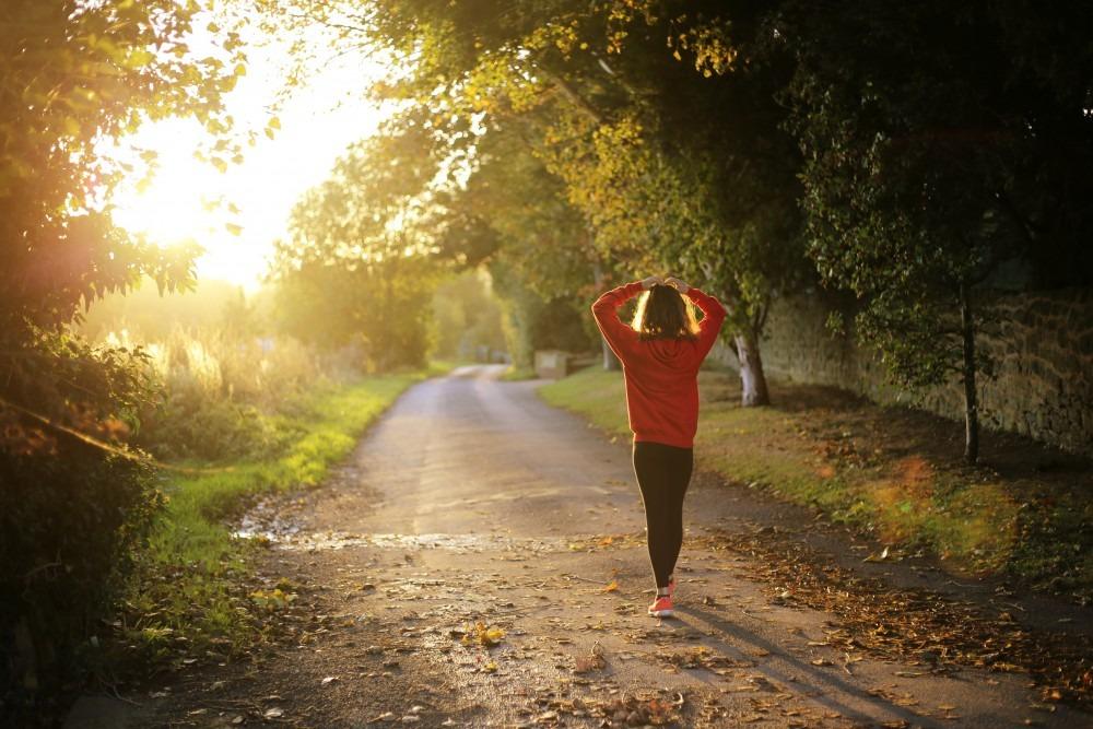 Benefícios da erva-mate para a saúde