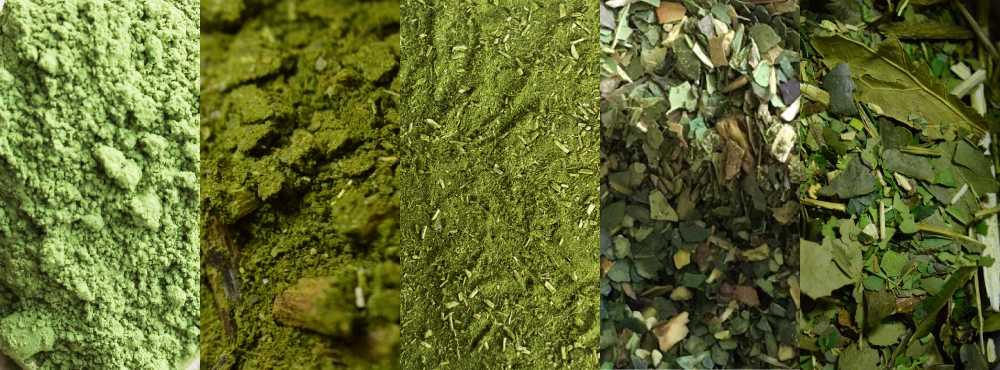 5 diferentes tipos de erva-mate. Ultra-fina, fina, moagem tradicional, moagem grossa e erva-mate pura-folha