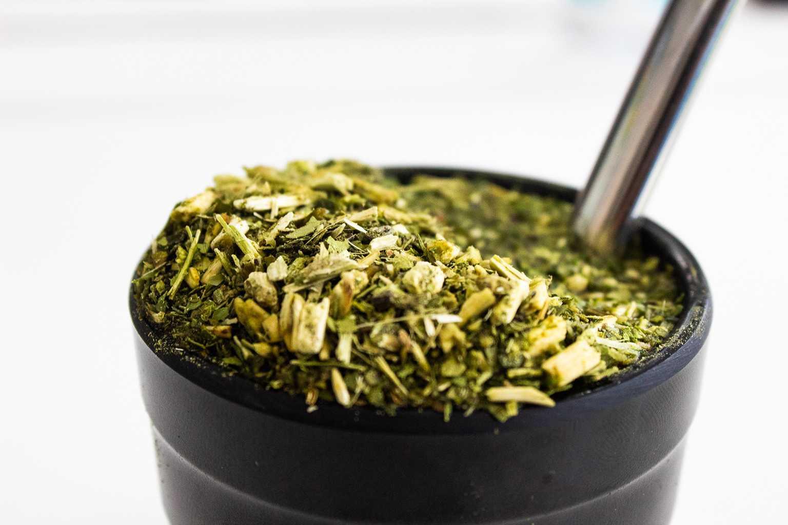 5 Receitas com erva-mate para fazer em casa