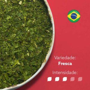 Erva-mate Pura Folha Mate Nativo Premium Export em recipiente metálico ocupando metade esquerda da imagem. Fundo rosa escuro e bandeira do Brasil circular no canto superior direito. Em escrito: Varidade fresca com intensidade nível 3 de 5.